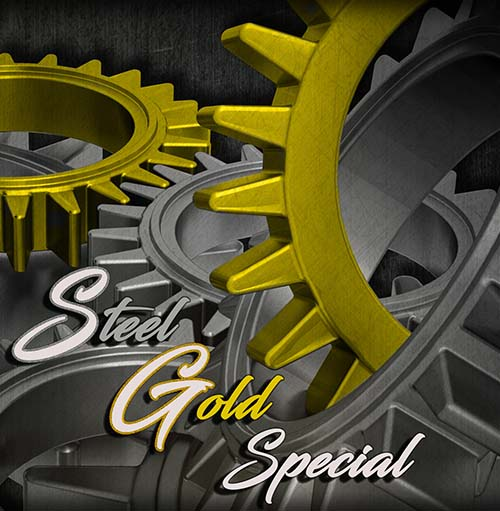 Steel Gold Special – The Beauty Of Two-Tone Fashion